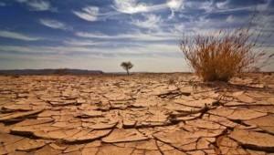 climat desertique